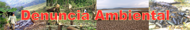 Azul-Ambientalistas-Banner-Denuncia-Ambiental