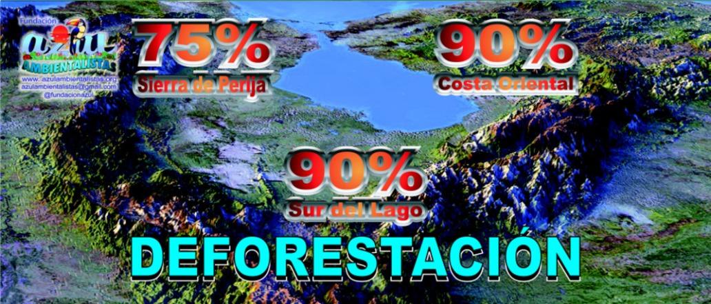 90-por-ciento-de-Deforestacion-en-el-Zulia-01