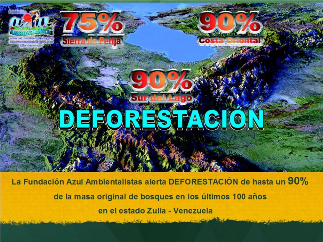 90-por-ciento-de-Deforestacion-en-el-Zulia-02