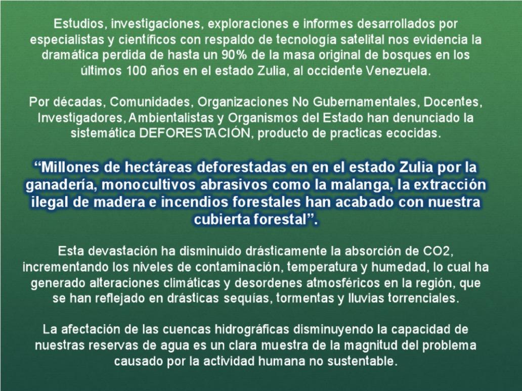 90-por-ciento-de-Deforestacion-en-el-Zulia-03