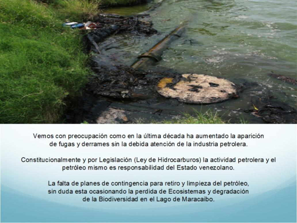 Azul-Ambientalistas-Petroleo-en-el-Lago-03