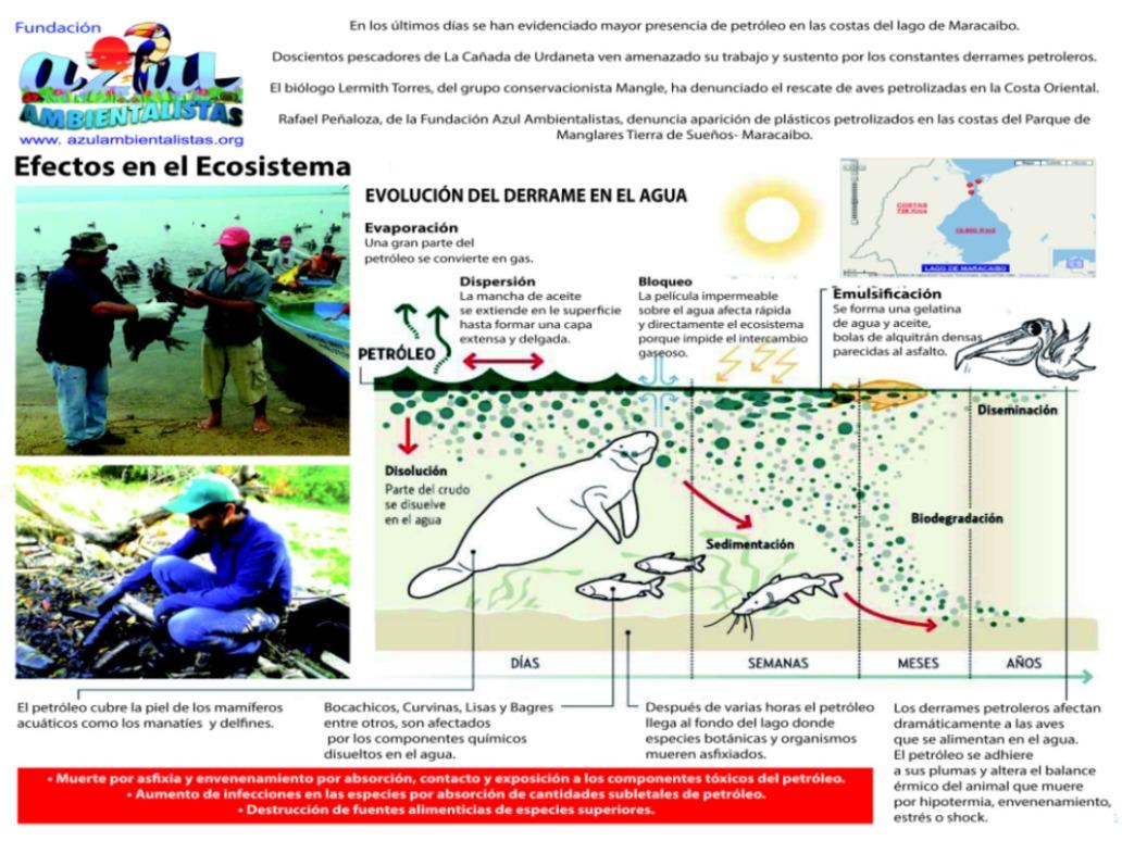 Azul-Ambientalistas-Petroleo-en-el-Lago-04