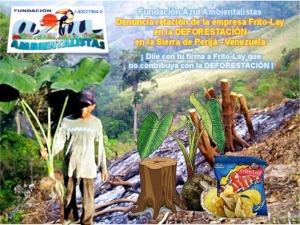La-Fundacion-Azul-Ambientalistas-denuncia-relacion-de-Frito-Lay-en-la-deforestacion-en-la-Sierra-de-Perija