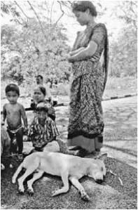 02 Selvakumar, El Perro Indu