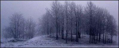 A4-invierno-sin-fin