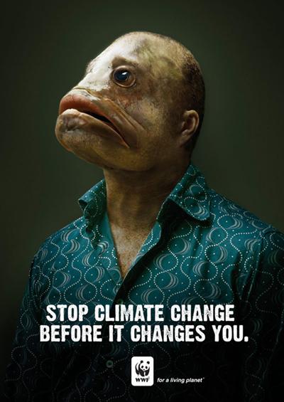 Cambio Climatico 3b