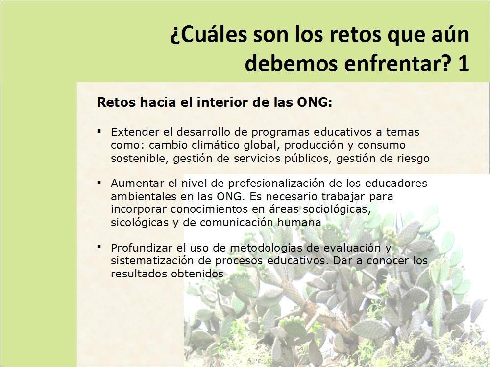 01-26-dia-mundial-de-la-educacion-ambiental-05j